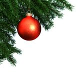 3d Rendering branch of the New Year fir tree. With a Christmas ball Stock Photo