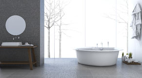 3d rendering bright minimal bathroom in winter Royalty Free Stock Photos