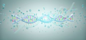 3d rendering data coded Dna with binary file around. View of a 3d rendering data coded Dna with binary file around Royalty Free Stock Photo