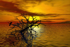 3d rendering of dead tree at Lake. Whit a crow on branch during sunset Stock Photography