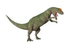 3D Rendering Dinosaur Allosaurus on White Stock Photo