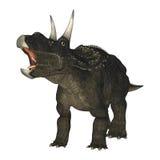 3D Rendering Dinosaur Diceratops on White Stock Photo