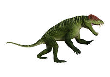 3D Rendering Dinosaur Doliosauriscus on White Stock Images