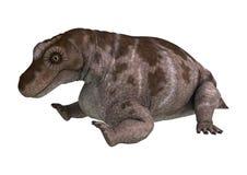 3D Rendering Dinosaur Keratocephalus on White Stock Photo