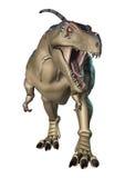 3D Rendering Dinosaur Tyrannosaurus on White Stock Photos