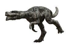3D Rendering Dinosaur Tyrannosaurus on White. 3D rendering of a dinosaur Tyrannosaurus isolated on white background Stock Photography