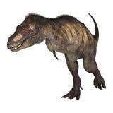 3D Rendering Dinosaur Tyrannosaurus on White Stock Image