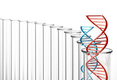 3D Rendering of Double Helix DNA in Test Tubes. Red and blue DNA helixes vector illustration