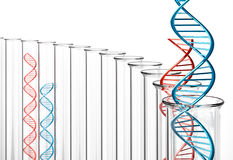 3D Rendering of Double Helix DNA in Test Tubes. Red and blue DNA helixes stock illustration