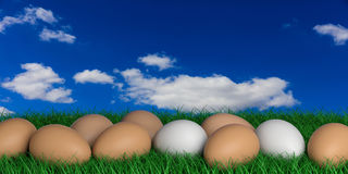 3d rendering eggs on a blue sky background Stock Image