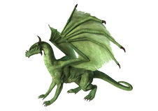 3D Rendering Fantasy Dragon on White royalty free illustration