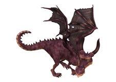 3D Rendering Fantasy Dragon on White Stock Photos