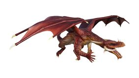 3D Rendering Fantasy Dragon on White Royalty Free Stock Images