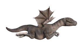 3D Rendering Fantasy Hatchling Dragon on White. 3D rendering of a fantasy hatchling dragon isolated on white background Stock Images