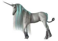 3D Rendering Fantasy Unicorn on White Royalty Free Stock Photography