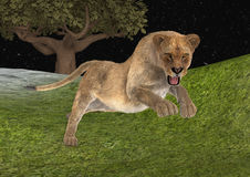 3D Rendering Female Lion Hunting Royalty Free Stock Photos