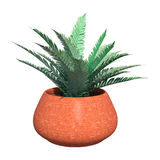 3D Rendering Fern in Red Pot on White Royalty Free Stock Photography