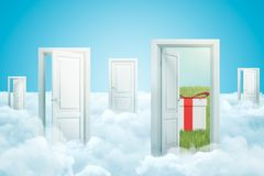 3d rendering of five doors standing on fluffy clouds, one door leading to green lawn with gift box on it. vector illustration