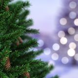 3d Rendering fragment Christmas tree. With cone Stock Images