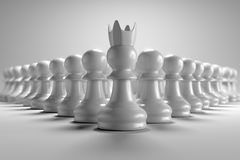 3D rendering front view of many pawn chess with leader in front of them in white background wallpaper. 3D rendering front view of many pawn chess with leader in Stock Photography