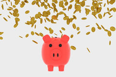 3D rendering of Golden coins falling into a piggy bank Royalty Free Stock Photography