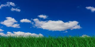 3d rendering grass and blue sky. With clouds Royalty Free Stock Photography