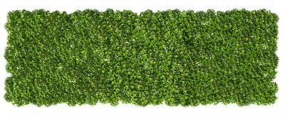 3d rendering of a grass patch isolated on white for architecture. Design or othe use Royalty Free Stock Image