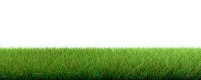 3d rendering of a grass patch  on white for architecture. Design or othe use Royalty Free Stock Images