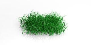 3d rendering grass on white background. 3d rendering green grass on white background Stock Photos