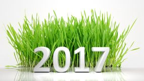 3D rendering of 2017 with green grass. On white background Royalty Free Stock Images