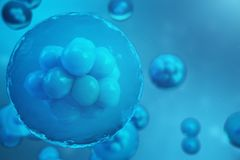 3D Rendering human or animal cells on blue background. Concept Early stage embryo Medicine scientific concept, Stem cell. Research and treatment Stock Photos
