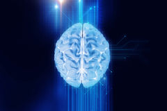 3d rendering of human  brain on technology background Royalty Free Stock Photography