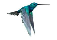 3D Rendering Hummingbird on White Royalty Free Stock Image