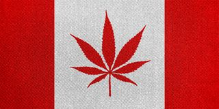 3D rendering idea for legalisation of marijuana in Canada. royalty free stock photography