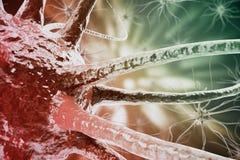 3d rendering of Influenza Virus H1N1. Swine Flu, infect organism, viral disease epidemic Stock Image