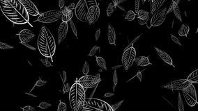 3d rendering of  leaf texture or leaf background stock footage
