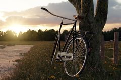 3d rendering of leaned black bicycle at tree in the meadow gras. Landscape in the evening sunlight Royalty Free Stock Photo