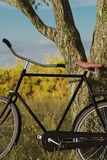 3d rendering of leaned black bicycle at tree in the meadow gras. Landscape Stock Images