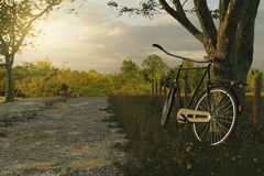 3d rendering of leaned black bicycle at tree in the meadow gras. Landscape in the evening sunlight Royalty Free Stock Photography