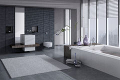 A 3D rendering of modern bathroom with single basin and jacuzzi Stock Photography
