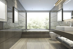 3d rendering modern classic bathroom with luxury tile decor with nice nature view from window Stock Photography