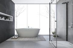 D rendering modern design bathroom in winter Stock Photography