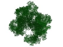 3d rendering of an outlined black tree with green edges isolated. On white background Stock Photo