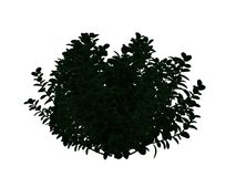 3d rendering of an outlined black tree with green edges isolated. On white background Royalty Free Stock Photo