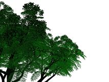 3d rendering of an outlined black tree with green edges isolated. On white background Royalty Free Stock Photography