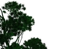 3d rendering of an outlined black tree with green edges isolated. On white background Royalty Free Stock Image