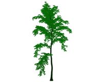 3d rendering of an outlined black tree with green edges isolated. On white background Stock Image