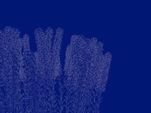 3d rendering of an outlined bush blueprint isolated on blue back. Ground Royalty Free Stock Photo