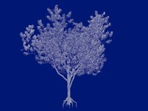 3d rendering of an outlined tree blueprint  on blue back. Ground Royalty Free Stock Photo