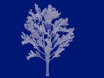 3d rendering of an outlined tree blueprint isolated on blue back. Ground Stock Photos